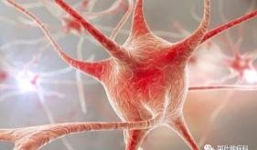 肌电图检查是干什么用的?